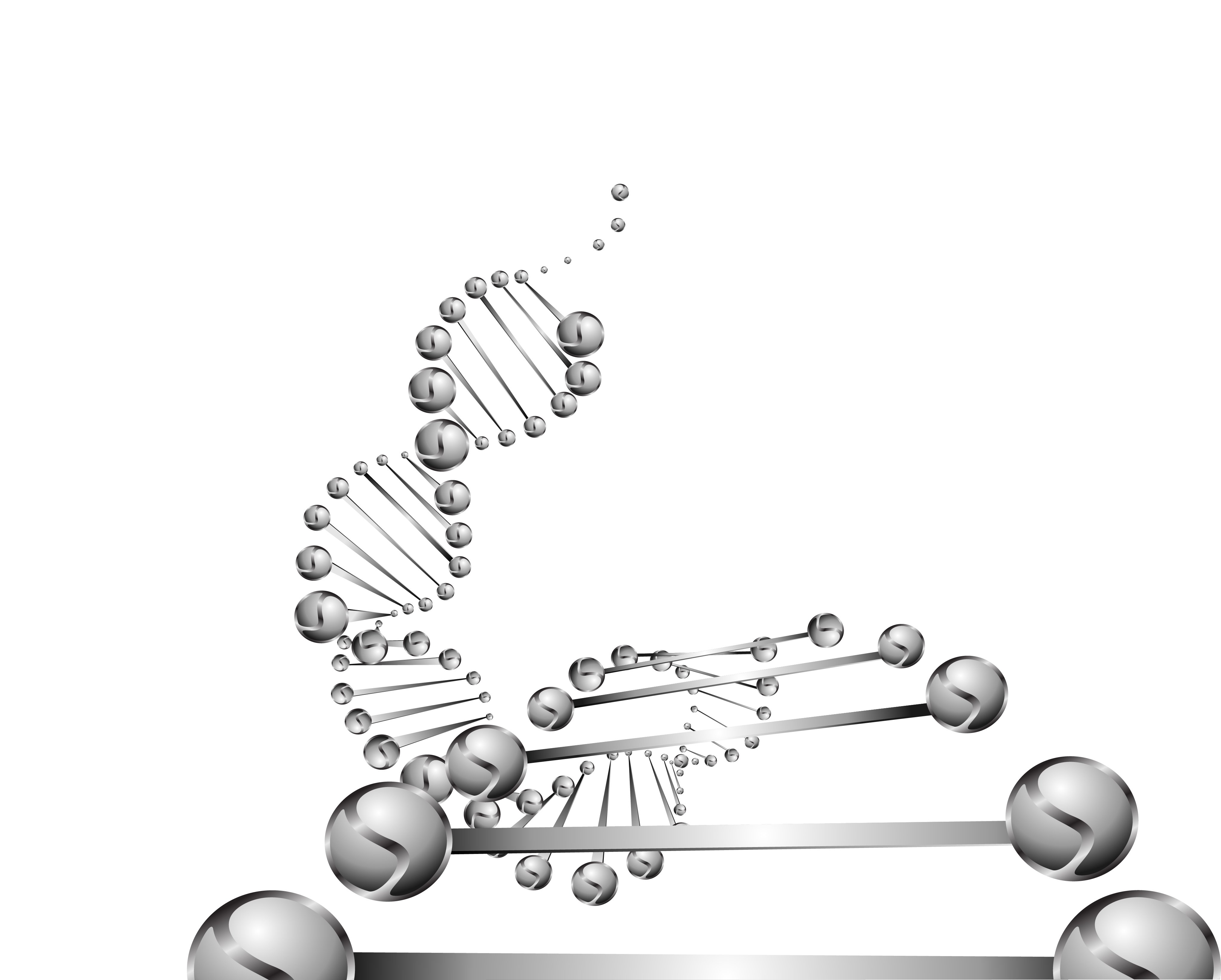 Methylation – The Missing Link in Personalised Nutrition