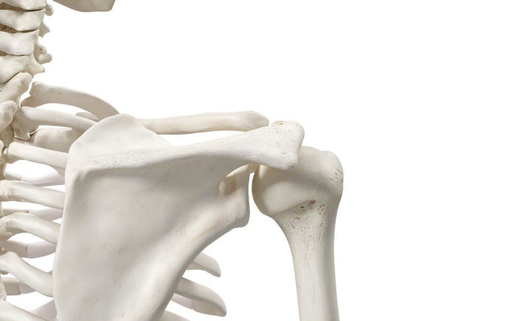 How To Support Your Bone Health