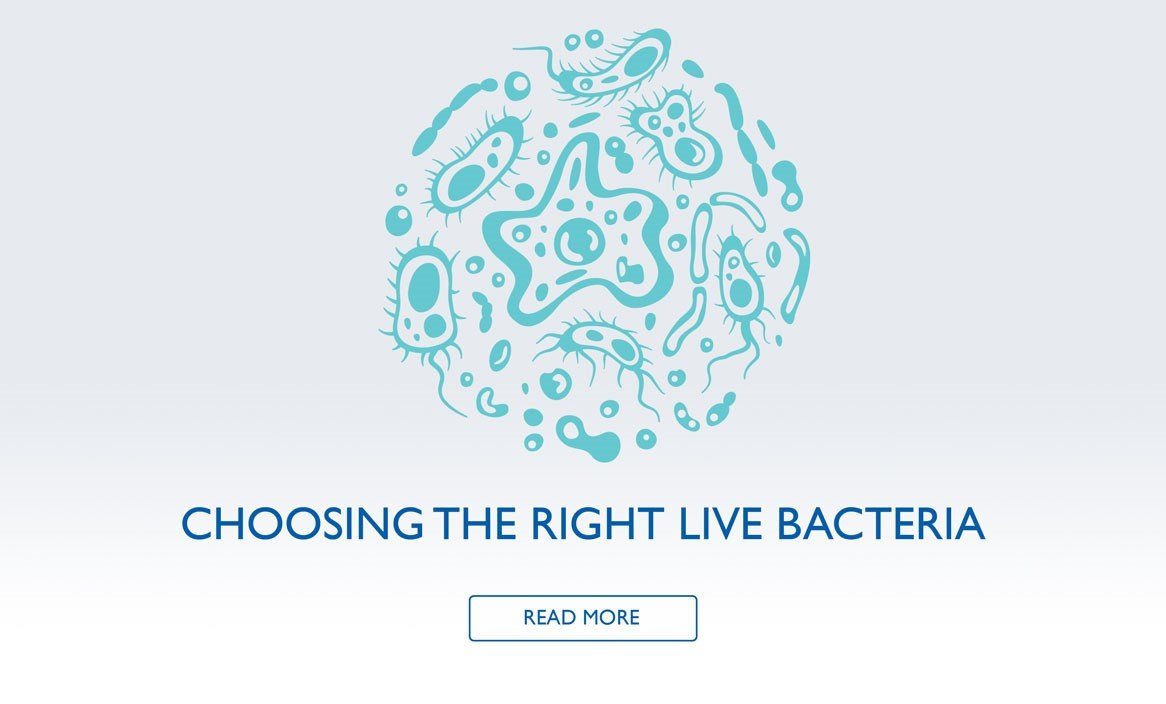 How do I choose the right live bacteria?