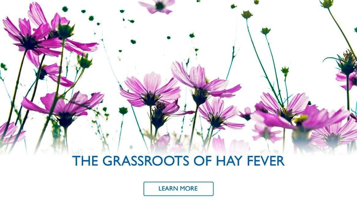 Hay Fever blog